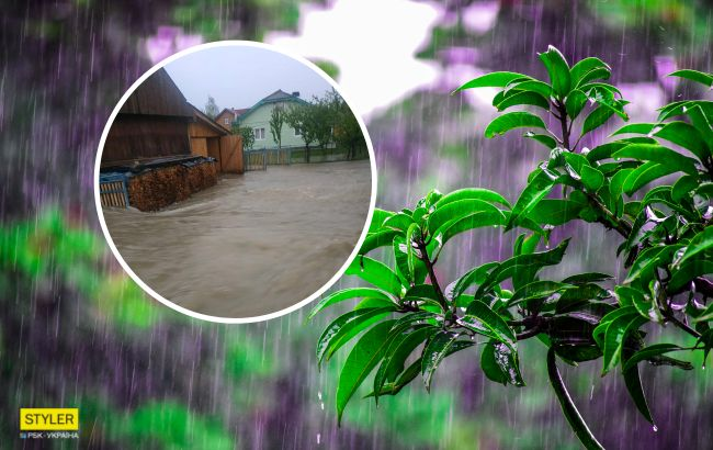 Из-за сильных ливней село на Прикарпатье ушло под воду (фото и видео)