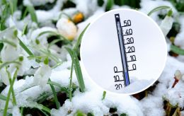 Мокрый снег и тепло: синоптики рассказали, как закончится зима