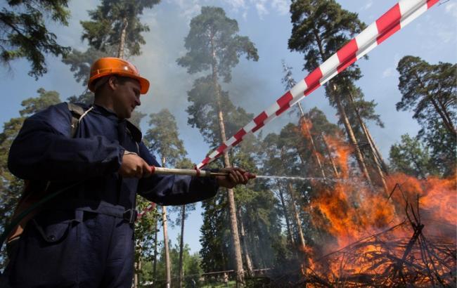 У Ростовській обл. горить 21 га лісу