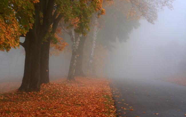 Фото: в Киеве ожидается туман