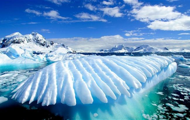 Фото: Антарктида (google.com)
