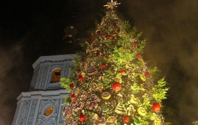 Фото: Новогодняя елка (Depo.ua)