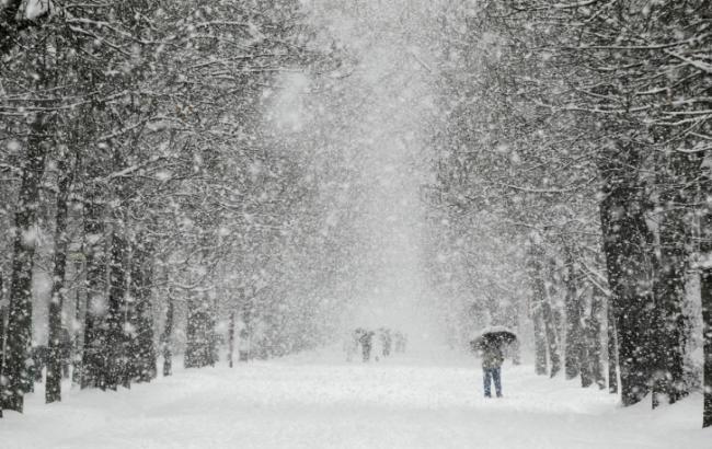 Фото: в Украине ожидаются снегопады