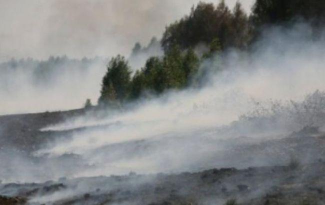 У Київській обл. рятувальники продовжують гасити 55 га торфовищ