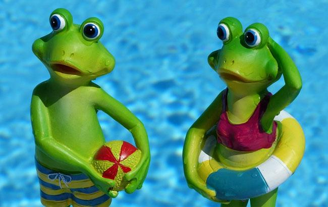 Фото: Жаби у басейні (pixabay.com/Ronile)