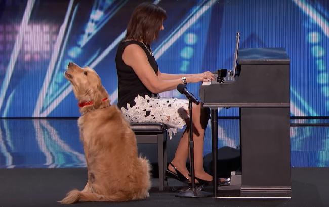 """Унікальний пес підкорив публіку своїм """"співом"""" на шоу талантів (відео)"""