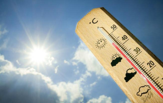 У Німеччині екстремальна спека завдала серйозних збитків економіці (5.28 22) c12f82894c61e