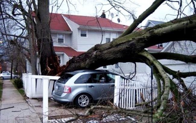 """У США кількість жертв урагану """"Майкл"""" зросла до 36"""