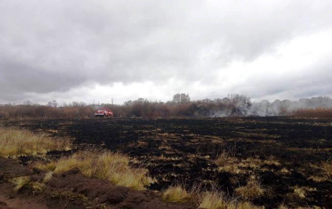 В Черниговской обл. произошло возгорание торфа на площади более 3 гектаров