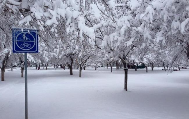 Фото: снегопады в Мексике