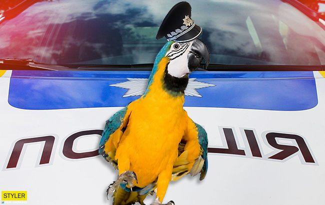 Імітує сирену: київська поліція взяла на роботу папугу