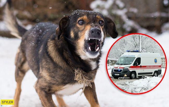 Собачі ікла вгризлися у щоку: у Херсонській області стався жахливий інцидент