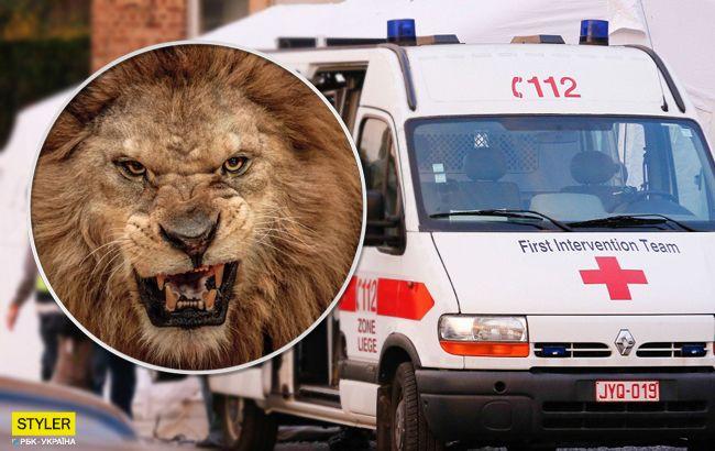 Лев загрыз владельца частного зверинца: подробности инцидента