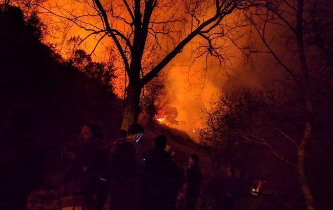 Жителів столиці Австралії закликають не виходити з дому через лісові пожежі