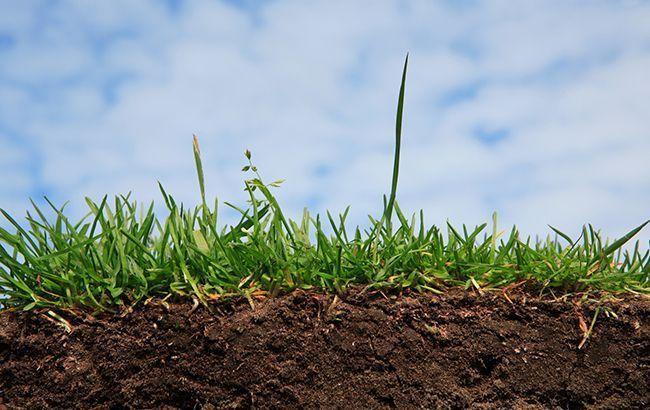 Сегодня озвучат окончательную версию земельной реформы