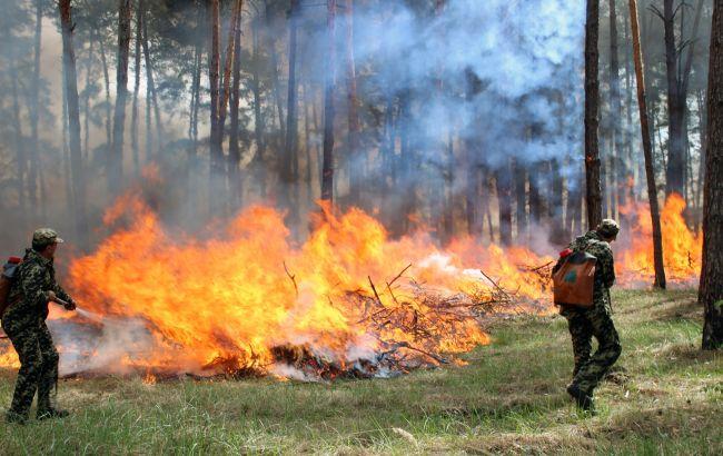 У деяких регіонах України сьогодні підвищений рівень пожежної небезпеки, - ДСНС