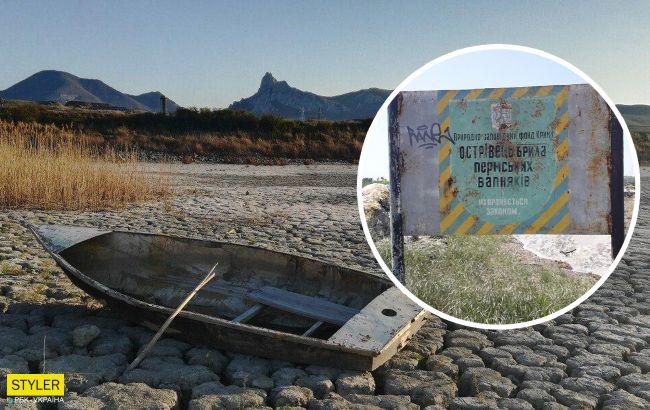 В Криму відбулося глобальне лихо: масштаби катастрофи вражають
