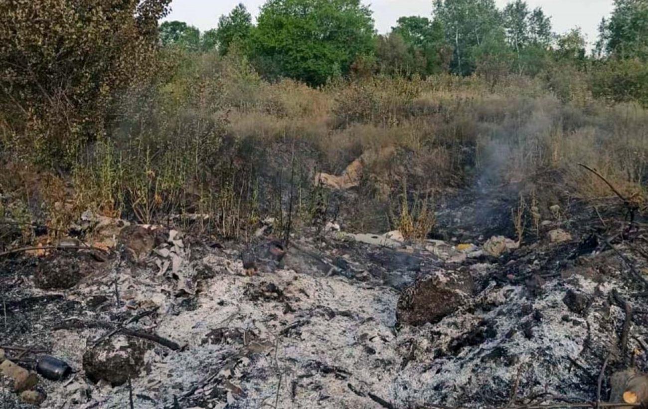В Днепре возник пожар на территории 3 гектаров: горел сухостой