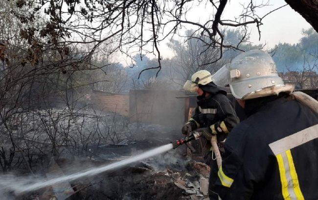 Лесной пожар в Луганской области: полиция назвала четыре источника возгорания
