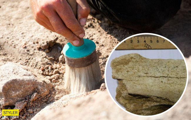Під Одесою знайшли останки невідомого величезного звіра, що жив мільйони років тому (фото)