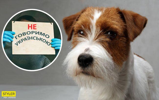У Києві жінці відмовили в обслуговуванні українською мовою: хотіла підстригти собаку