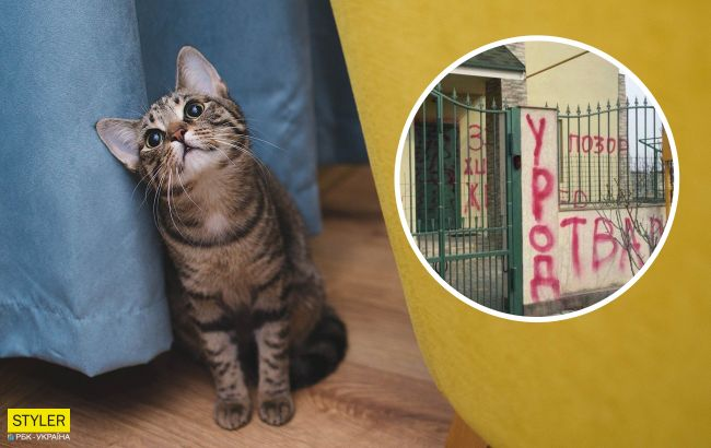 Под Одессой люди проучили живодера, который замучил кота на глазах у хозяина (видео)