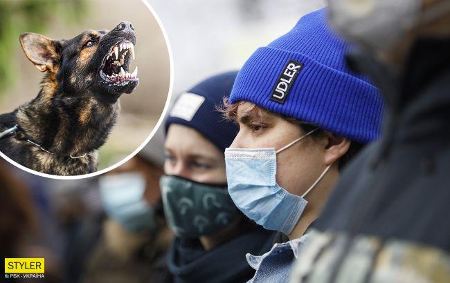 В Киеве в двух районах ввели карантин из-за бешенства: где именно