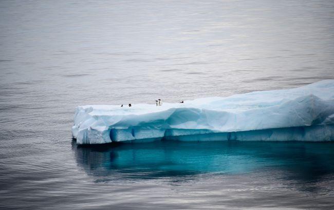 Розтанув найбільший айсберг в світі: був зіркою соцмереж