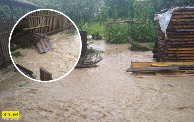 На Закарпатье ливни затопили дороги и дома: люди по колено в воде (видео)