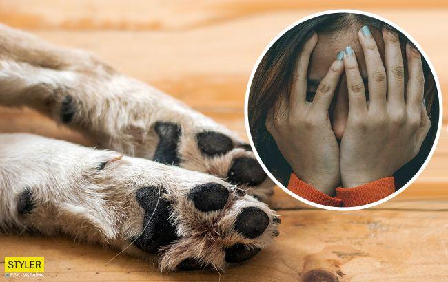 """21-річний вінничанин жорстоко зарізав собаку на очах у дітей: """"вкусив схожий пес"""""""