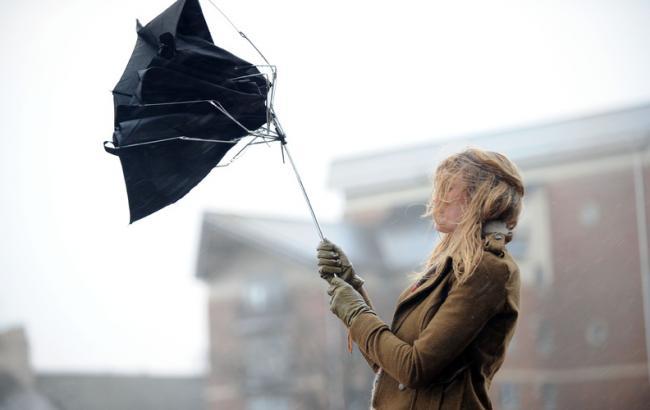 КГГА предупреждает киевлян о шквальном ветре 1 апреля