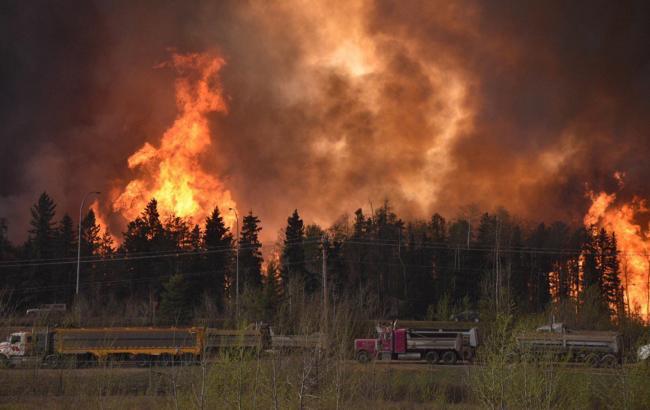 В Канаде площадь лесных пожаров за сутки увеличилась в десять раз