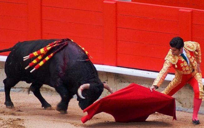 Фото: щороку в Іспанії проходить близько 2 тисячі корид