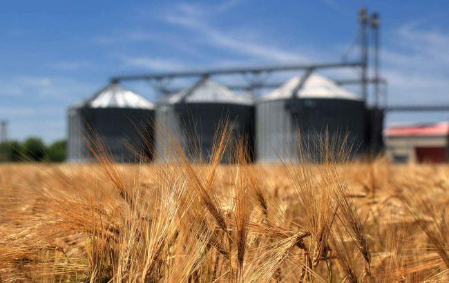 Фото: екпорт зерна в 2016 році складе 40 млн тонн