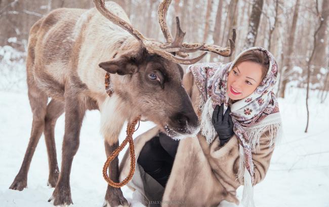 Фото: Северный олень (urdm.ru)