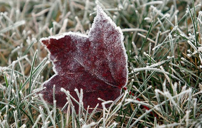 28-29сентября внескольких областях ожидаются заморозки— ГСЧС