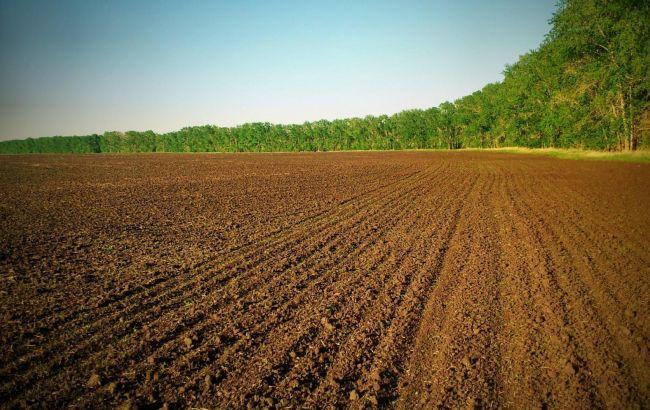 Фото: в ВРУ готовят законопроект о продлении моратория на продажу земли