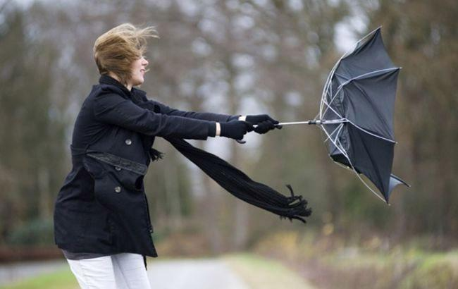 Фото: Сильний вітер (Kulturologia.Ru)