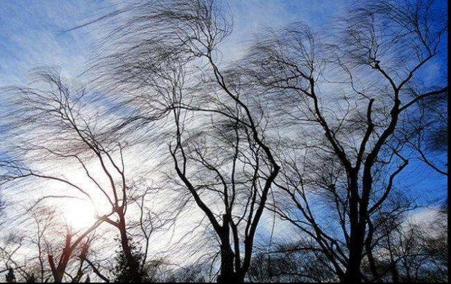 Фото: в Украине ожидаются сильные порывы ветра