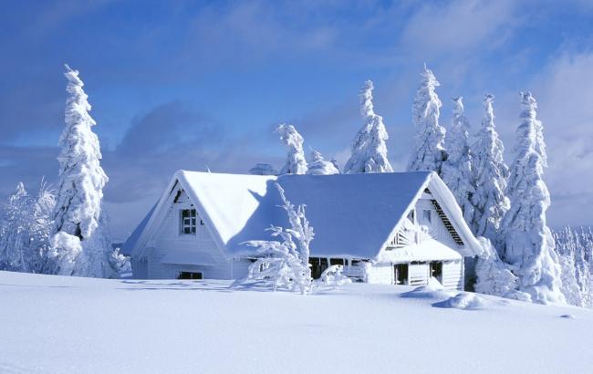 Фото: Зима (1366x768.ru)