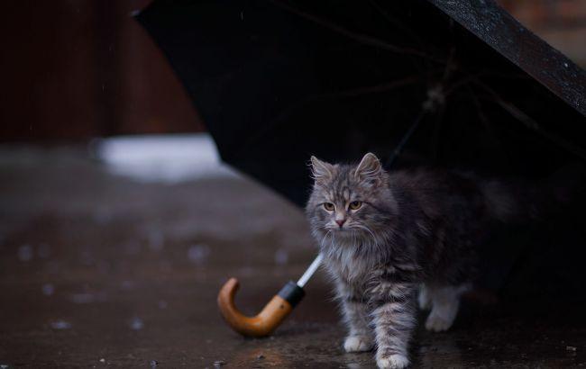 Фото: погода в Україні