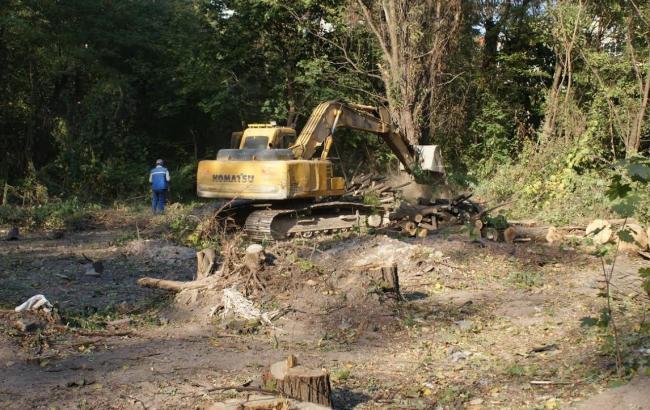 Активісти заявляють про незаконну вирубку дерев під висотне будівництво на вул. Ломоносова в Києві