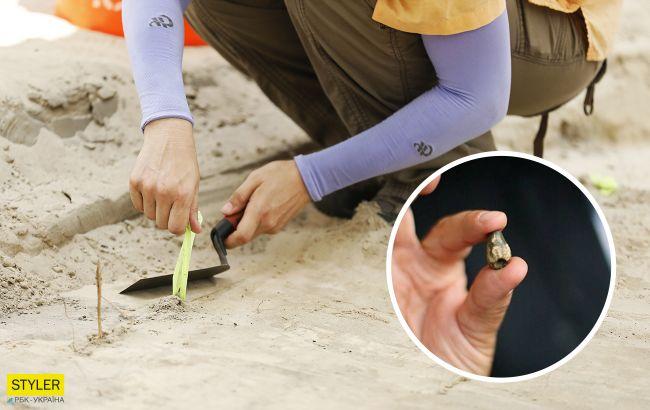 В Киевской области нашли останки динозавра: что говорят об этом ученые