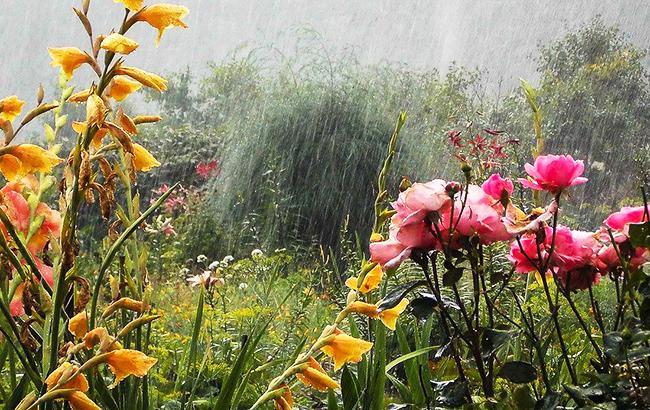 Грозові дощі і похолодання: синоптики попередили українців про зміну погоди