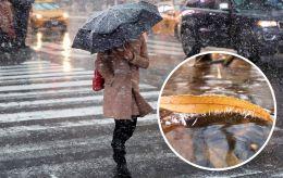 Сніг і мороз: синоптики розповіли, якою буде погода в восьмий день весни
