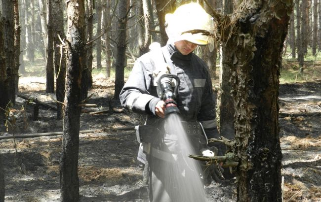 """Фото: лесной пожар на ГП """"Цюрупинское"""" (пресс-центр ГСЧС)"""