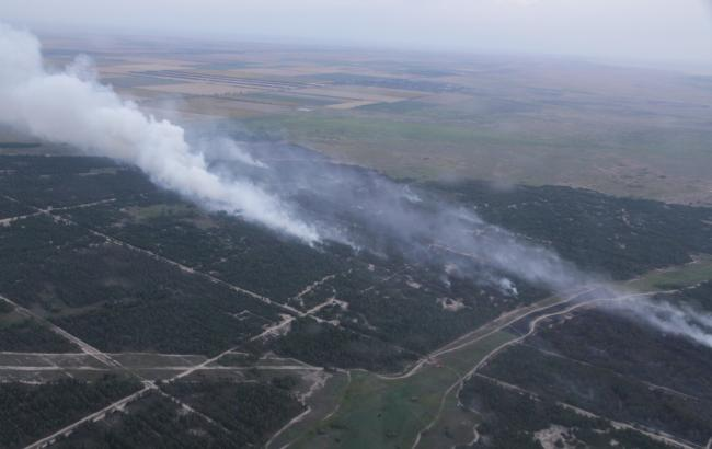 Фото: лесной пожар в Херсонской области (dsns.gov.ua)