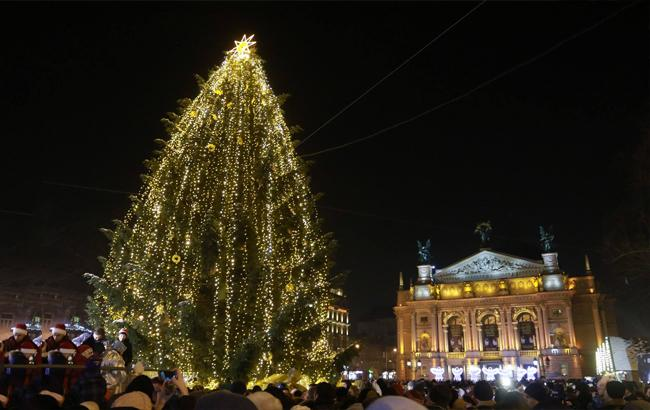 Главная елка Львова (фото: facebook.com/lviv.adm)