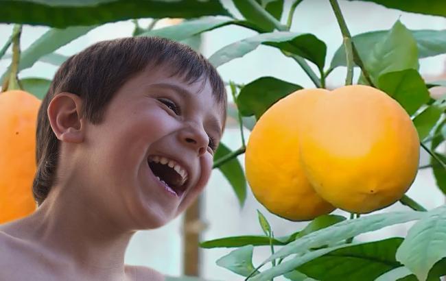 У Запоріжжі виріс екзотичний фрукт з рекордною вагою (відео)