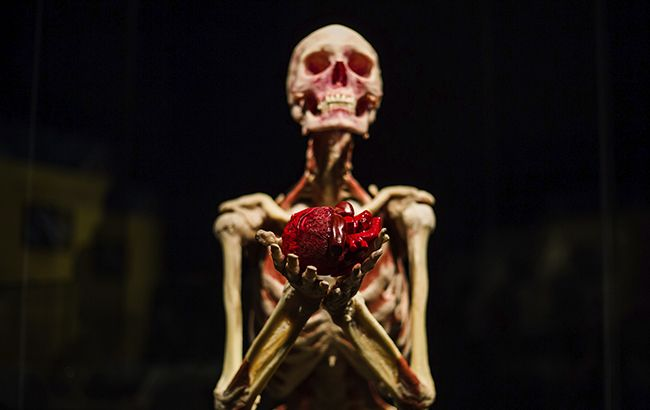 Всесвіт тіла: 7 причин відвідати скандальну виставку в Києві